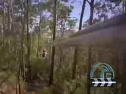 丛林穿梭体验视频